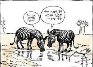 מישל קישקה, קריקטורה זברות